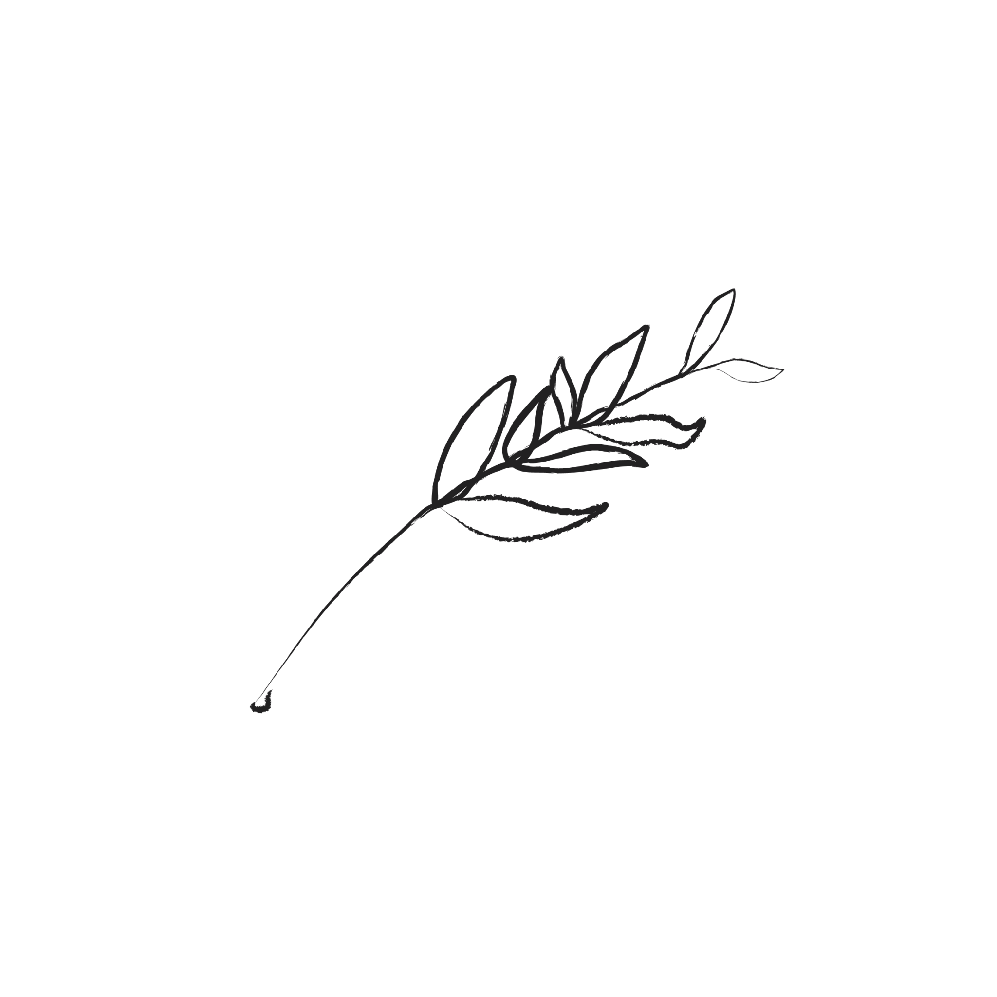Illustrated leaves